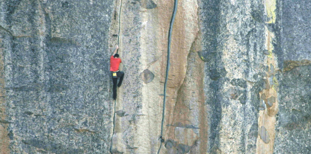 freesolo.png